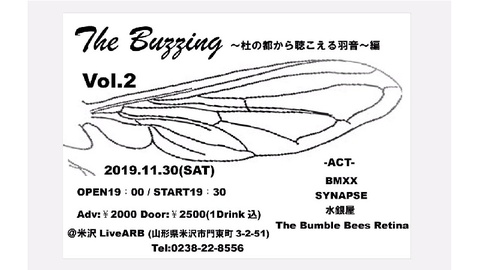 『The Buzzing Vol.2』